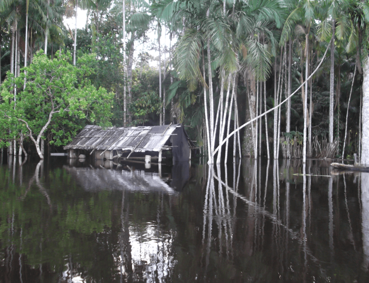 Hut on river - Brazil - Governance of Labour and Logistics for Sustainability