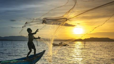 Fishing net at sunset - Bliss